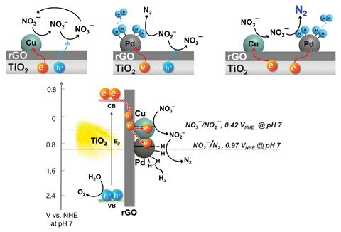 An scheme detailing the solar denitrification coupled with water splitting